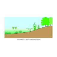 004 A pond or lake (Artist: Chatterton, Ken)