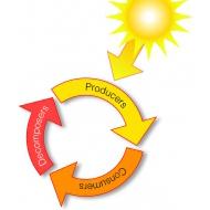 007 Energy cycle (Artist: Chatterton, Ken)