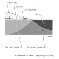 4-8 Saline Intrusion into groundwater close to the coast (Artist: Chatterton, Ken)