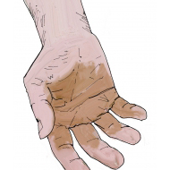 Hand without aggregate - stained - colour (Artist: Shaw, Rod)