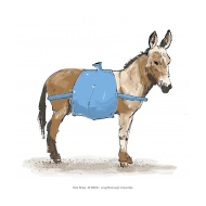 Donkey with water carrier - colour (Artist: Shaw, Rod)