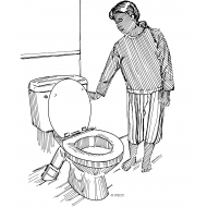 Flush toilet v1 (Artist: Shaw, Rod)
