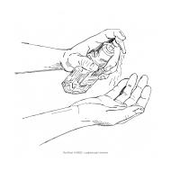 Handwashing 1a (Artist: Shaw, Rod)