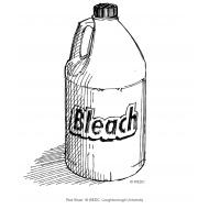 Bleach (Artist: Shaw, Rod)
