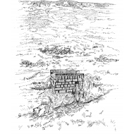 Spring box on a hillside (Artist: Shaw, Rod)