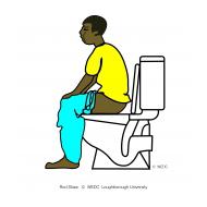 Man defecating - flush toilet (Artist: Shaw, Rod)