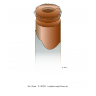 Anthill soil pipe with netting 2 - colour (Artist: Shaw, Rod)